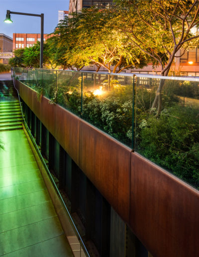Urban walkway in New York surrounded by anchored trees and bushes