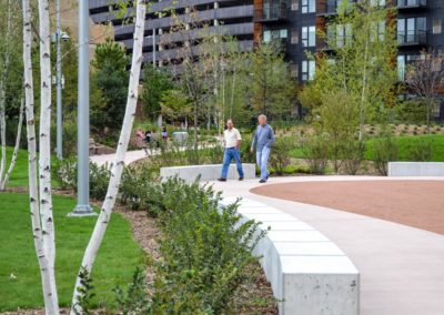 Trees planted at The Commons Minneapolis