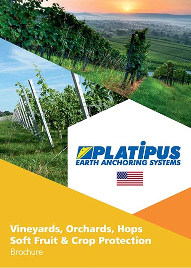 Platipus Vineyards brochure cover with US flag